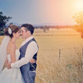 in the Fields of Australia by Alan Evans - Wedding Bride & Groom ( wedding photography, wedding day, wedding, aj photography, bride and groom )