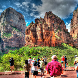 Zion National Park Admiring God's Beauty by Hien Pham - Landscapes Travel ( creation, god, park, national, zion )