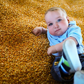 Children of the Corn by Jared Lantzman - Babies & Children Babies ( kernal, playing, chilling, children of teh corn, baby, posing, boy, corn,  )