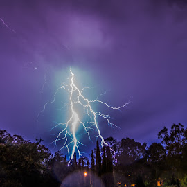 Adelaide Lightning by Sean Heatley - Landscapes Weather ( sean heatley photography, homeh, south australia, lightning, australia, adelaide, trees, night-time )