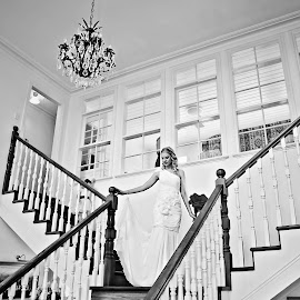 On The Stairs by Alan Evans - Wedding Bride ( wedding photography, chandelier, stair case, melbourne wedding photographer, black and white, aj photography, getting ready, wedding dress, stairs, wedding, wedding day, wedding veil, bride )