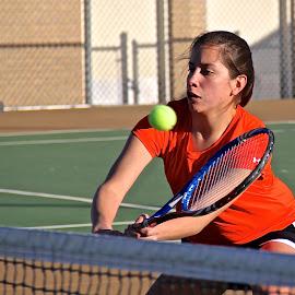 Drop Shot by Steven Aicinena - Sports & Fitness Tennis ( tennis,  )