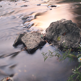 by Aires Spaethe - Nature Up Close Water ( water, stream, park, waterscape, sunset, long exposure )