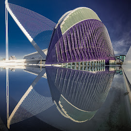 Agora by Jorge Igual - Buildings & Architecture Other Exteriors ( water, building, reflection, blue, valencia )
