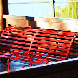 Little Red Bench  by Mark Bentley - City,  Street & Park  City Parks ( red, park, bench, prth, park bench, city park, western australia, kingspark, city )