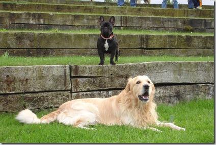Otto y Pepa