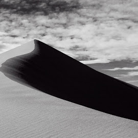 Duality by Richard Rowland - Landscapes Deserts ( curve, sand, dunes, sky, black and white )