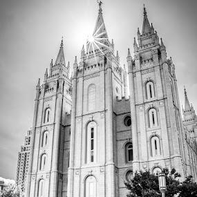 Salt Lake Temple by Dallas Golden - Black & White Buildings & Architecture ( religion, christianity, black and white, salt lake temple )