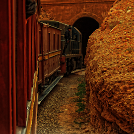 train by Mohamed Mehrez - Transportation Trains ( hdr, rail, dark, train, journey, tunnel,  )