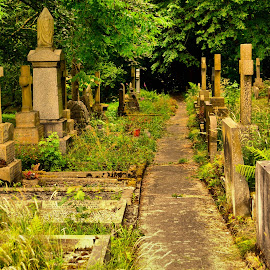 Graveyard by Nic Scott - Buildings & Architecture Other Exteriors ( graves, graveyard,  )