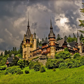 Peles Castle by Savca Victor - Buildings & Architecture Public & Historical