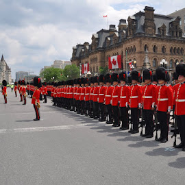 Ceremonial Guard of the Canadian Armed Forces by David Lewis - News & Events World Events ( canada, ottawa, ceremonial guard )