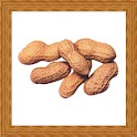 Peanut Gallery icon