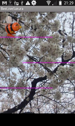 Bee Love Sakura