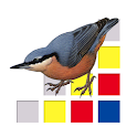Birds of Europe icon