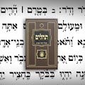 App Tehillim Ohel Yosef Yitzchak APK for Kindle