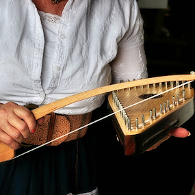 Bowed Psaltery by Karen Hardman - Artistic Objects Musical Instruments (  )