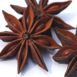 star anise (illicium verum) by Adjie Tjokrosoedarmo - Food & Drink Ingredients