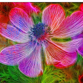 Fancy Anemone by Mill Tal - Digital Art Abstract
