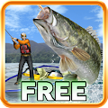 Free Bass Fishing 3D Free APK for Windows 8