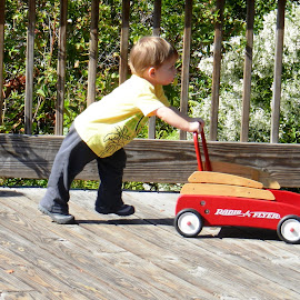 Boy with Wagon by Kathy Rose Willis - Babies & Children Toddlers ( child, red, play, red wagon, candid, fun, toddler )
