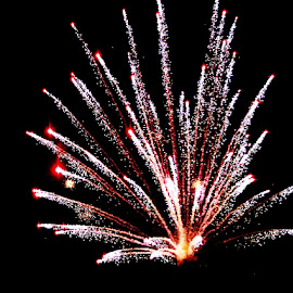 Firework by Wawan Adi - News & Events Entertainment