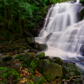 The Waterfall by Charliemagne Unggay - Nature Up Close Water ( water, waterscape, green, waterfall, rocks )