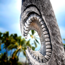 Jaws by Joseph Vittek - City,  Street & Park  Historic Districts ( puuhonua o honaunau, kale o keawe, tiki, national historical park, crypt, kings, hawaii, big island )