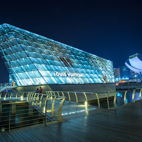 LV at Marina Bay by Reza Roedjito - Buildings & Architecture Architectural Detail