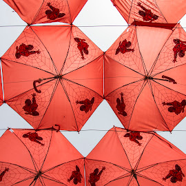 Spiderman Umbrellas by Sarita Jithin - Abstract Patterns