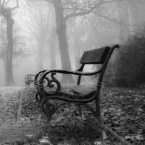 by Manuela Dedić - Black & White Objects & Still Life (  )