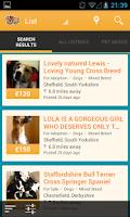 Screenshot of Pets4Homes
