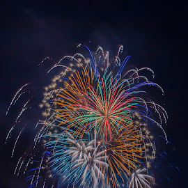 Colorful Cluster by Pat Green - Abstract Fire & Fireworks ( steilacoom, events, 4th of july 2013, fireworks, things, wa, places, 2013 holidays,  )