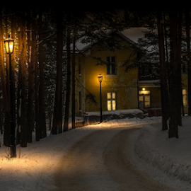House by the road by Branislav Rupar - Buildings & Architecture Other Exteriors ( pathway, forest, mountains, winter, sigma 24-70 f/2.8, light bulbs, window, cold, ice, snow, nikon d600, lamp, night, slippery, light )
