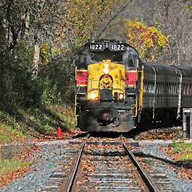 Cuyahoga Valley Scenic Railroad #1 by Reuss Griffiths - Transportation Trains ( fall leaves, cuyahoga valley national park, railroad, scenic railroad, diesel locomotive )
