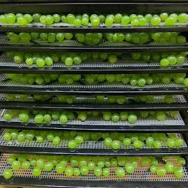 Soon to be raisins by Sylvia Lockard - Food & Drink Fruits & Vegetables