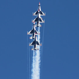 USAF Thunderbirds by Amara Dempsey - Transportation Airplanes ( novice, air force, airplanes, airplane, aircraft, transportation, entertainment, military, air show, airshow,  )