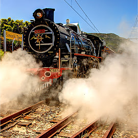 Jenny by Maricha Knight van Heerden - Transportation Railway Tracks ( steam train, south africa, simonstown, jenny )