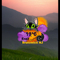 Halloween Weather Widget icon