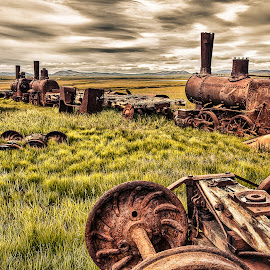 by Robert Arrington - Transportation Trains ( gold rush, alaska, nome, trains,  )