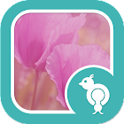 Go Locker Pink Spring Flowers icon