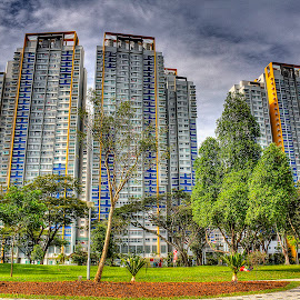 Buildings by Mustafa Kamsari - Novices Only Landscapes ( hdr, buildings, landscape )