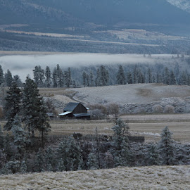 Barn Shot by Kansas Allen - Landscapes Prairies, Meadows & Fields ( ranch, canada, fences, morning, field, farm, mountians, winter, barn, cold, fog, snow, trees, weather, bc, lillooet )