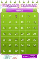 Screenshot of Pregnancy Calendar