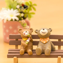 Bears by Yu Tsumura - Artistic Objects Toys ( bear, dango, bench, toys, flower )