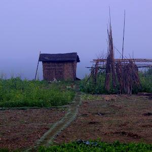 Pixoto Village life.jpg