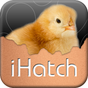 iHatch-Chickens For PC