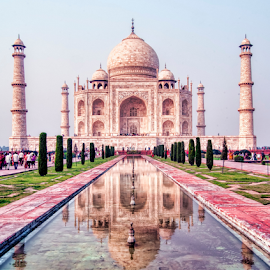 Taj Mahal by Arindam Chakrabarty - Buildings & Architecture Public & Historical (  )
