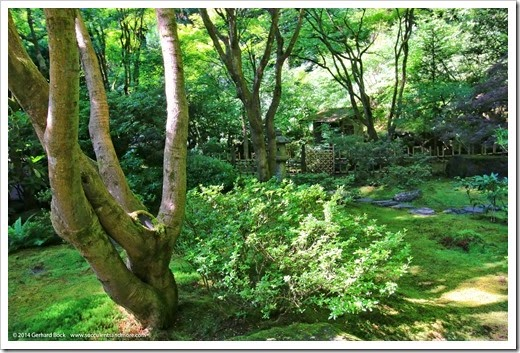 140712_PortlandJapaneseGarden_003