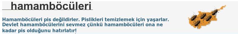 Yeraltı Notları, Sevgul Uludag's blog on hamamboculeri.org